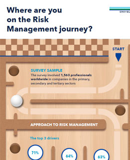 Risk Management infopgrahic snippet