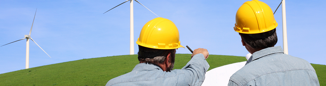 Wind farm engineering support
