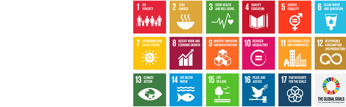 Sustainable development goals grid
